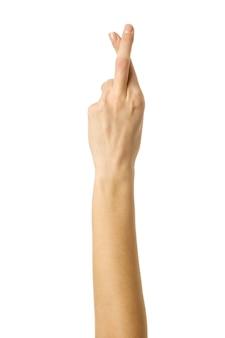 Dedos cruzados. mão da mulher com manicure francesa gesticulando isolado no fundo branco. parte da série