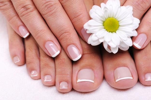 Dedos do pé femininos bonitos e bem tratados com flores