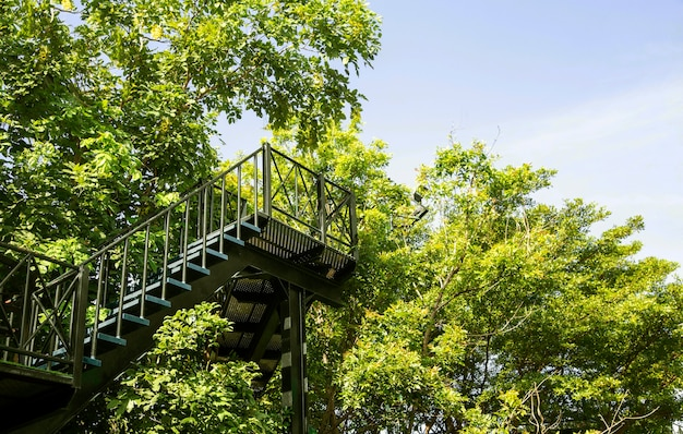 Degrau de escada de aço ao ar livre em jardim com vista panorâmica