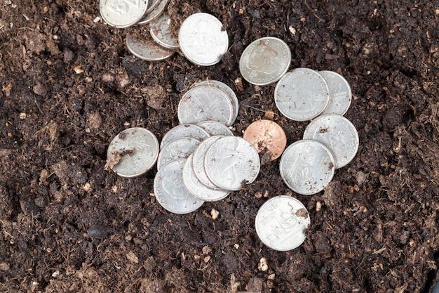 Deitado em um solo negro fértil, moedas americanas de diferentes denominações,