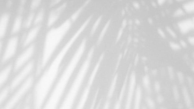 Deixa a sobreposição de sombra natural no fundo de textura branca, para sobreposição na apresentação do produto, pano de fundo e maquete, conceito sazonal de verão