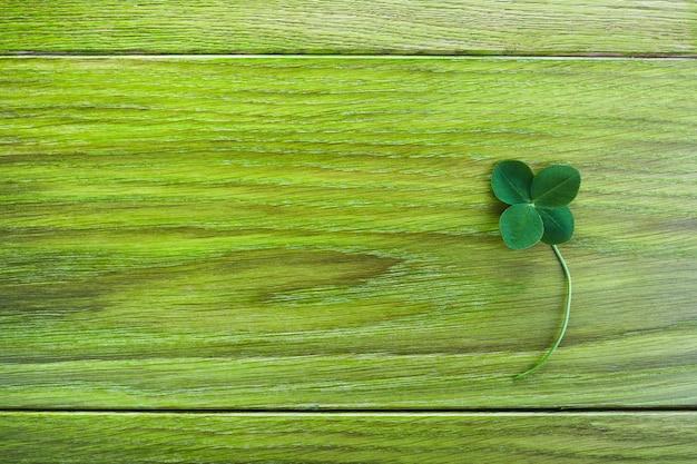Deixe o trevo sobre fundo verde de madeira. saudação feliz trevo de quatro folhas. conceito de sorte. símbolo do dia de patrick.