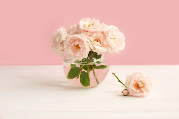Delicadas e leves rosas de jardim em um vaso transparente em uma superfície rosa pastel
