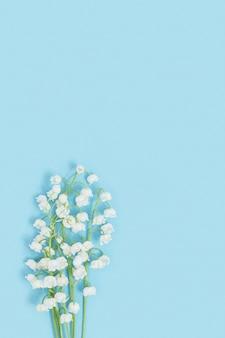 Delicadas flores da primavera desabrochando lírio branco do vale em um fundo azul suave.