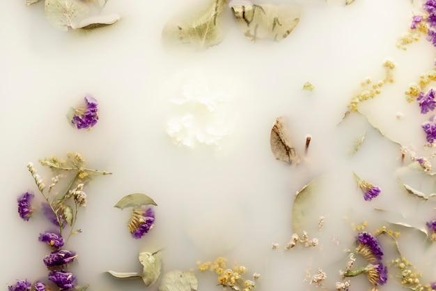 Delicadas flores roxas na água colorida branca