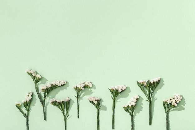 Delicadas flores secas limônio, folhas e pequenas flores, fecham o herbário.