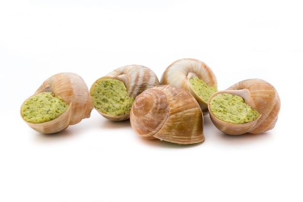 Delicadeza de caracóis cozidos. caracóis recheados da culinária francesa.