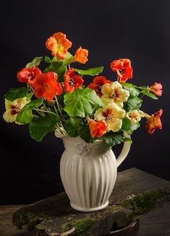 Delicado buquê de flores de capuchinha em um vaso