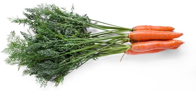 Deliciosa cenoura crua