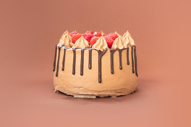 Delicioso bolo caseiro de chocolate com frutas sobre fundo isolado