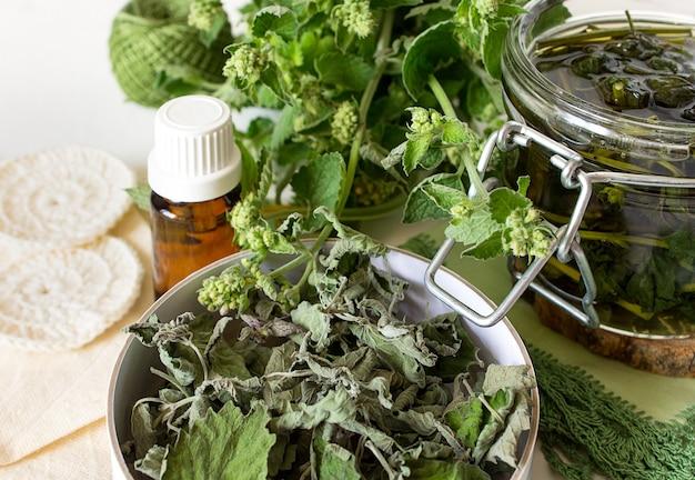 Delicioso caldo de hortelã chá erva-cidreira, água floral