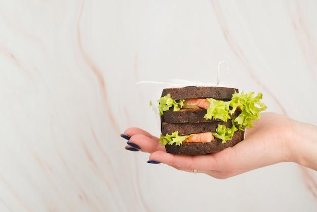 Delicioso sanduíche na mão