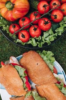 Deliciosos sanduíches com legumes. bacia de vegetais saudáveis do eco na grama.