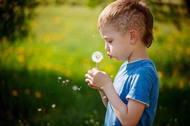 Dente-de-leão de sopro do rapaz pequeno bonito no jardim da mola.