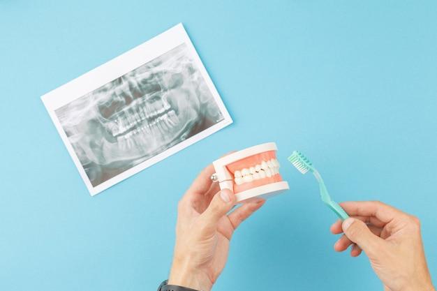 Dentista com escova de dentes mostra como escovar
