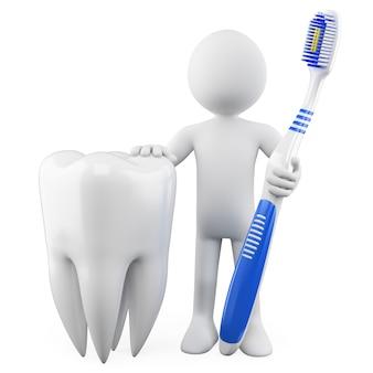 Dentista com um dente e escova de dentes