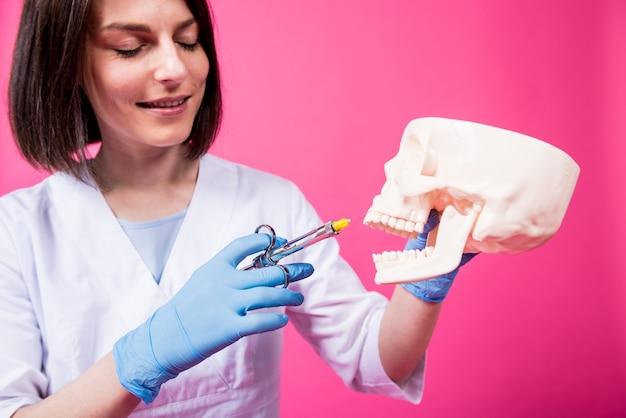 Dentista com uma seringa carpool injeta anestésico na gengiva do crânio artificial