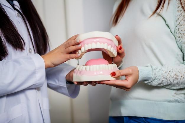 Dentista e paciente segurando o modelo de mandíbula dental. fechar-se