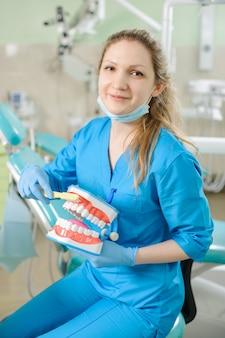 Dentista feminina mostrando o modelo de mandíbula dental e toothbrusht