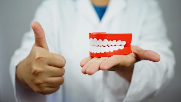 Dentista feminina segurando uma dentadura e desistindo de um polegar.