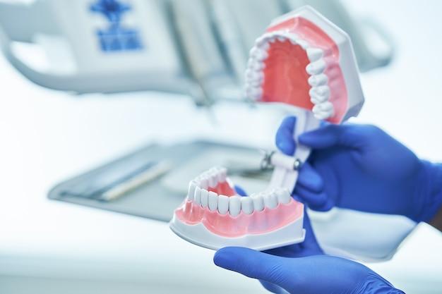 Dentista masculino mostrando mandíbula e dentes para a câmera no consultório dentário