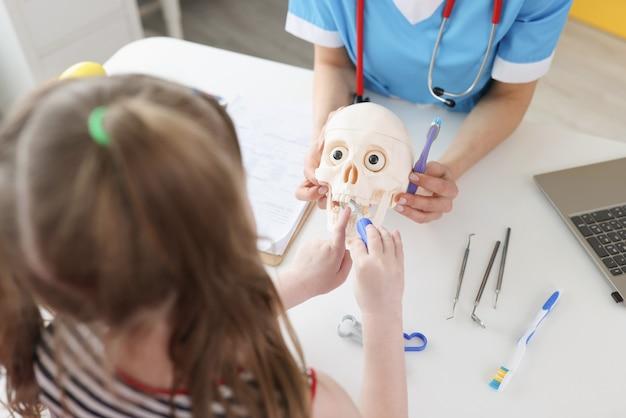 Dentista mostra a menina como escovar os dentes corretamente com a escova no crânio