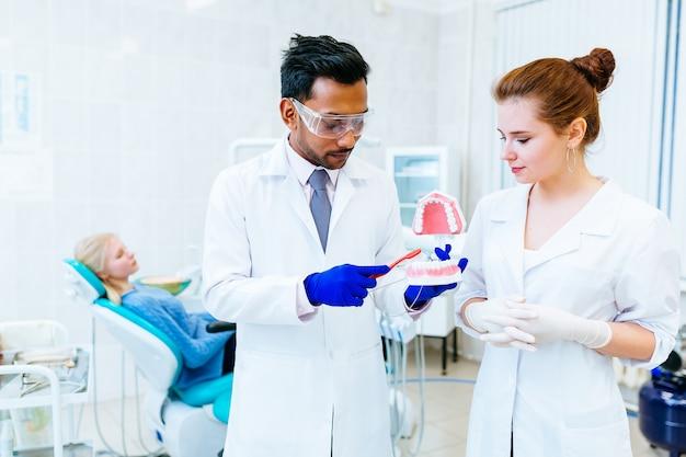 Dentista, mostrando o modelo da mandíbula na clínica