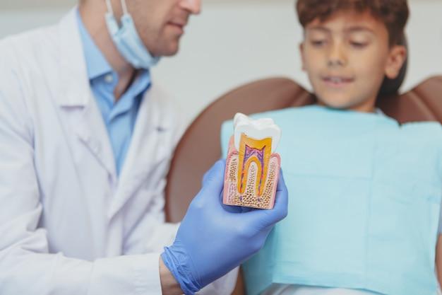 Dentista profissional, explicando os cuidados dentários a um jovem rapaz, mostrando-lhe o modo de dente