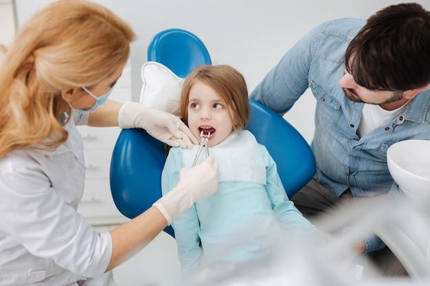 Dentista qualificado e cuidadoso focado puxando o dente de leite de seus pacientes enquanto a criança fica muito calma e sentada imóvel na cadeira
