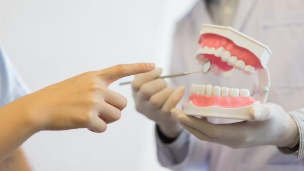 Dentista segurando a dentadura do modelo de dentes para explicar ao paciente