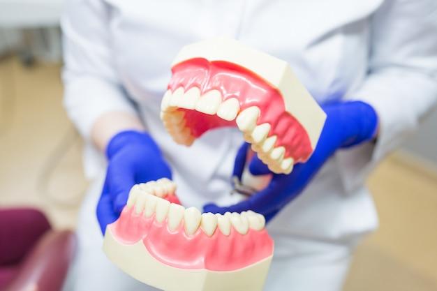 Dentista segurando prótese dentária