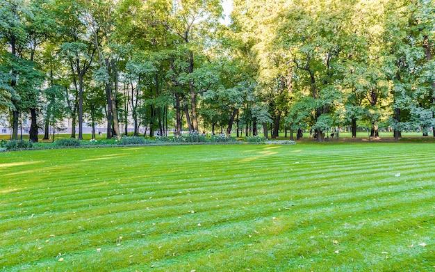 Dentro do jardim mikhailovsky, parque idílico no centro de são petersburgo, rússia