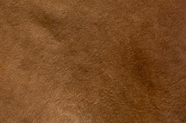 Descasque a textura de uma vaca vermelha, close up. produto natural.