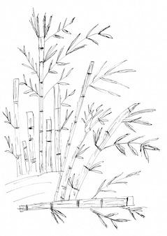 Desenho à mão de bambu e folhas com tinta preta, em papel branco