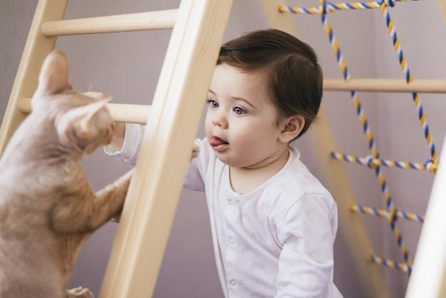 Desenvolvimento físico da criança e do gato Foto Premium