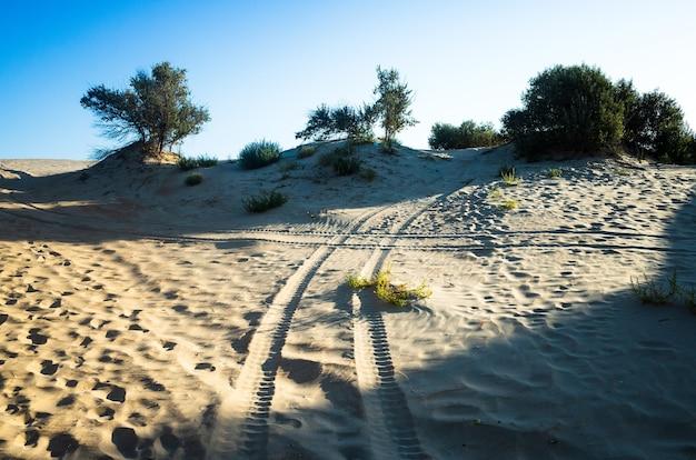 Desert quad safari