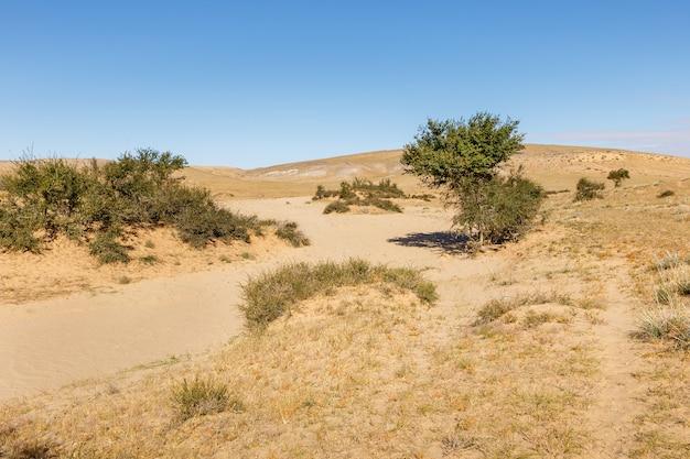 Deserto de gobi na mongólia