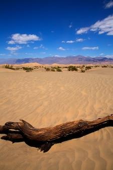 Deserto de mesquite dunes no parque nacional do vale da morte