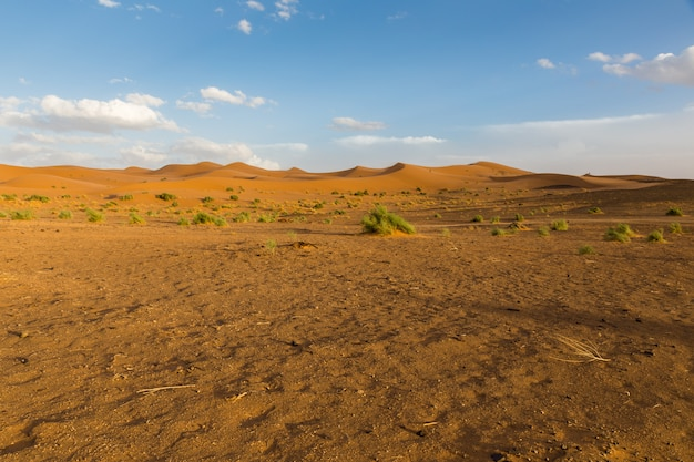 Deserto do saara em marrocos