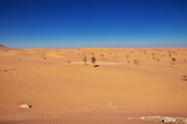 Deserto do saara no coração da áfrica