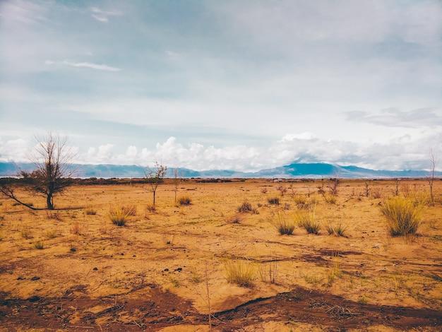 Deserto e a montanha a paisagem.