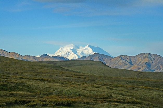 Deserto montanhas alaska natureza denali