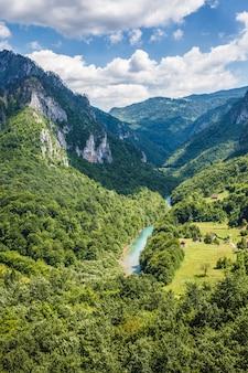 Desfiladeiro do rio tara nas montanhas do montenegro