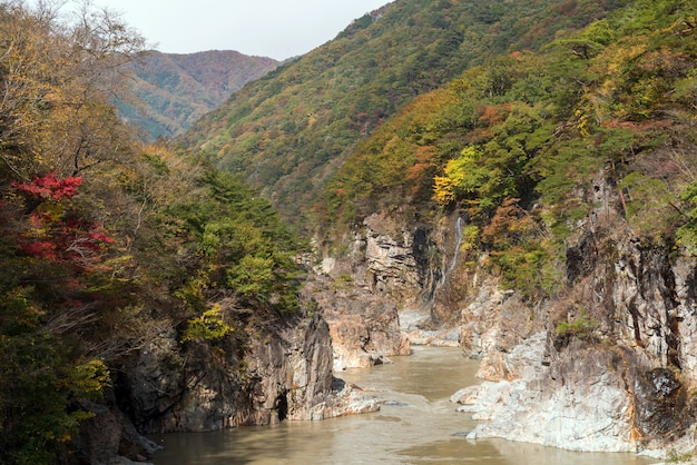 Desfiladeiro ryuyo gorge nikko japão