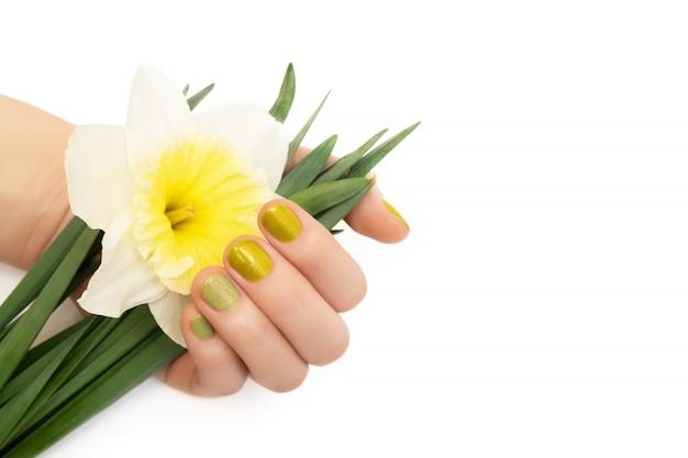 Design de unhas verde. mão feminina com glitter manicure segurando flores de narciso.