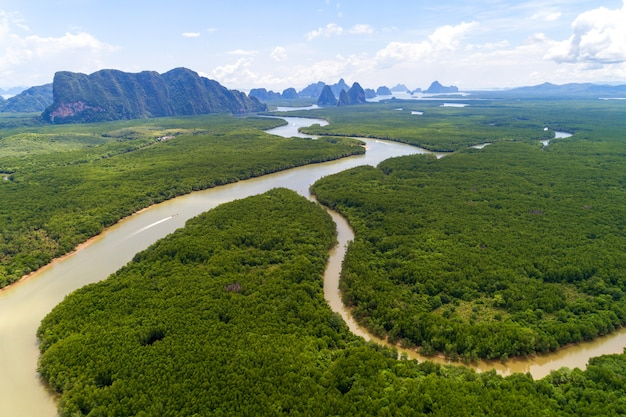 Deslumbrante cenário natural bonito da paisagem na floresta tropical de mangue da ásia com pequena ilha