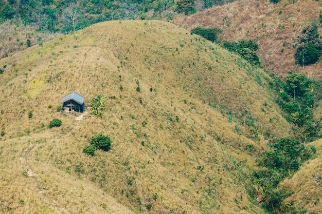Desmatamento de cabanas e florestas destruídas.