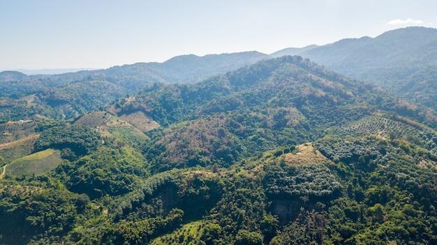 Desmatamento e planejamento do uso do solo em terras altas na província de nan, tailândia, conceito de floresta ambiental e de conservação