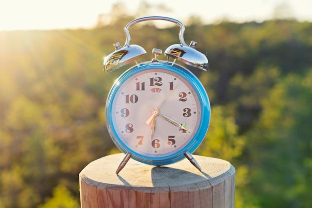 Despertador azul vintage no fundo de floresta de verão