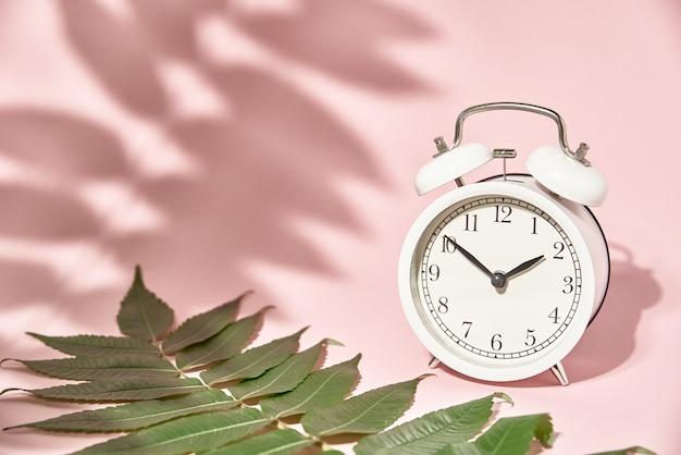 Despertador branco e sombras de folhas em fundo rosa pastel. conceito de tempo mínimo criativo